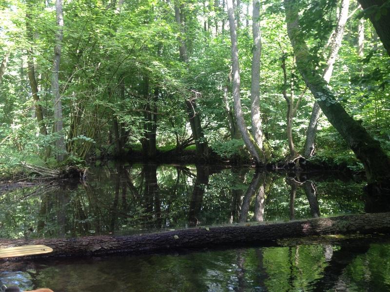 10 Seen Runde auf der Mecklenburgischen Kleinseenplatte
